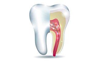 http://delmonddentistry.com/wp-content/uploads/2015/11/rootcanal-320x200.jpg
